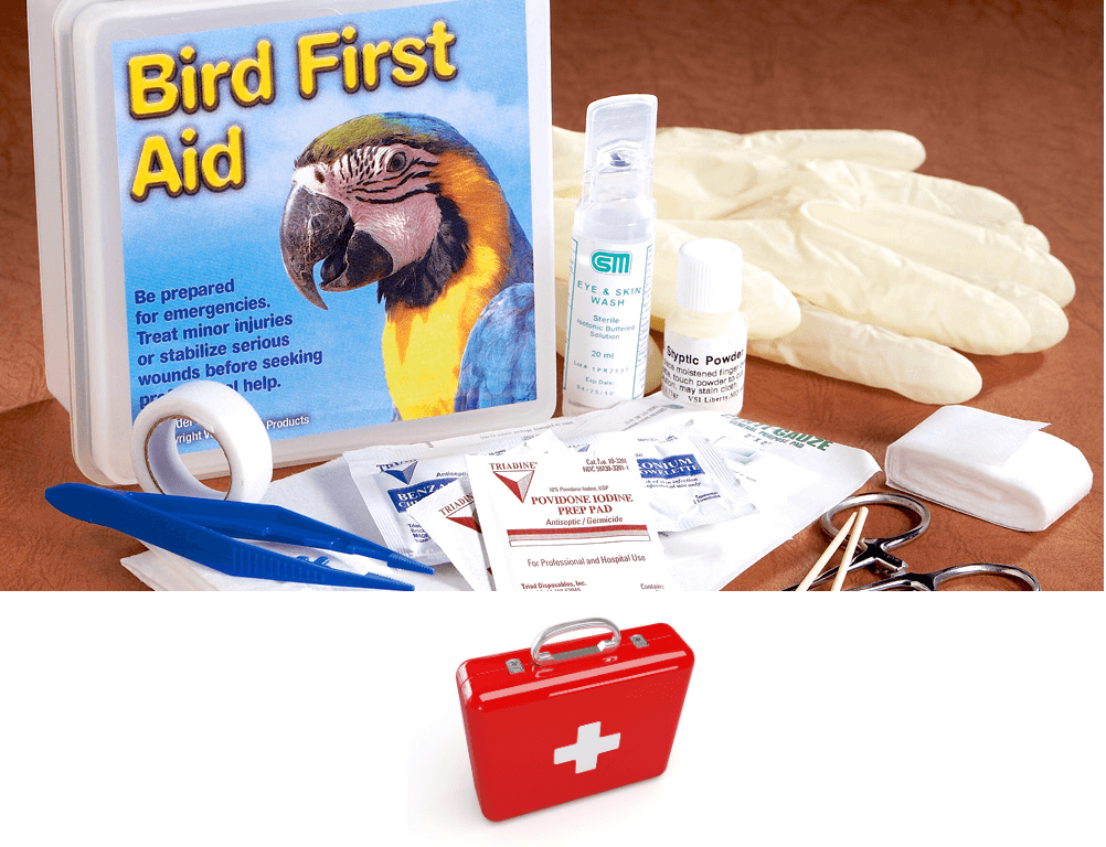 Emergency Care Kit for your parrot