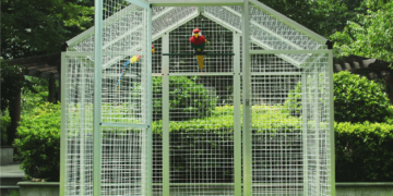 Top Parrot Cages