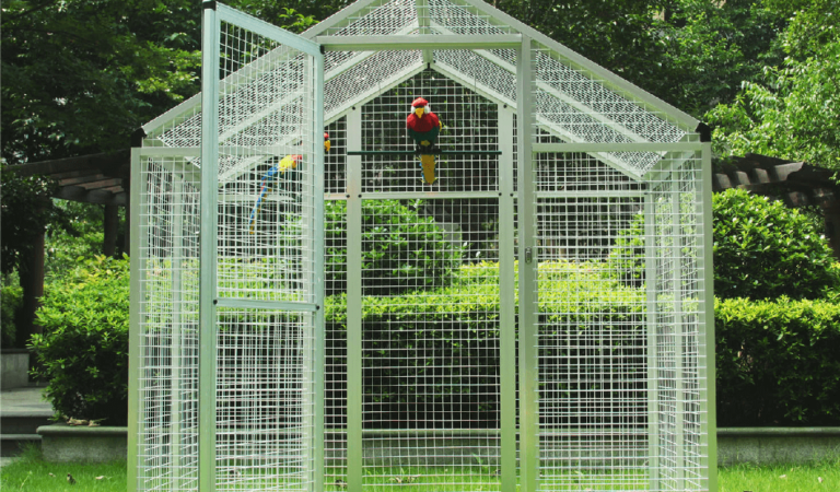 The 10 Best Parrot Cages