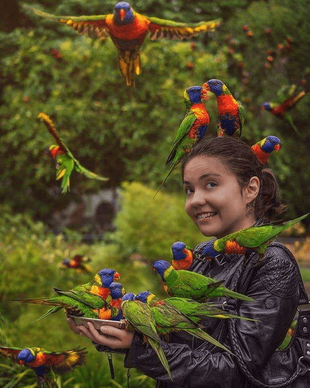 Parrot Facts for child