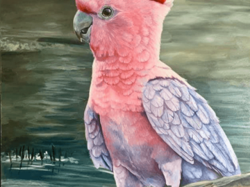 parrot drawing art pet