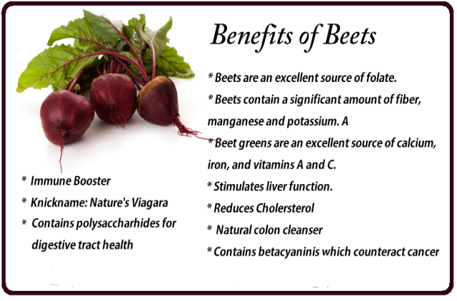 Benefits of Beets for parrot