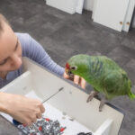 Living with Uncommon Indoor Pets
