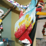 Story of Fred, my big parrot